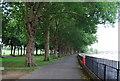 TQ2575 : Thames Path in Wandsworth Park by N Chadwick