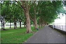 TQ2475 : Thames Path in Wandsworth Park by N Chadwick
