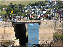 SX8751 : Entrance to the Dartmouth Boat Float by Stephen Craven