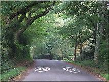 TQ4532 : Kidd's Hill, Newbridge by Malc McDonald