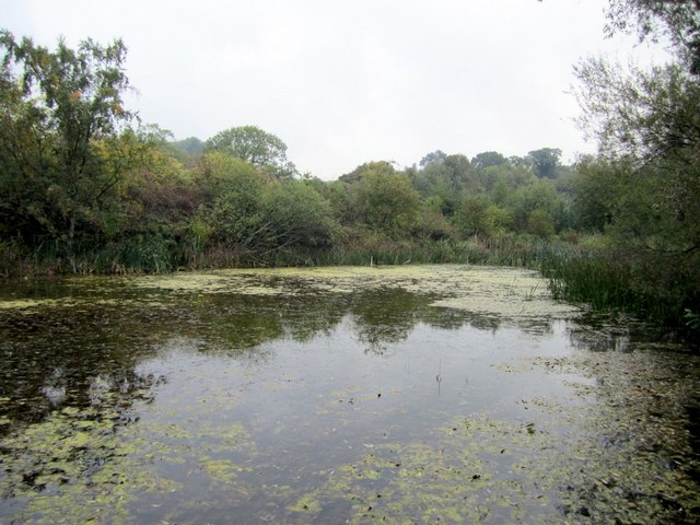 Reigh Pond, east end