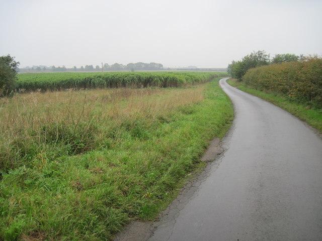 Minor  road  south  of  Kirkburn
