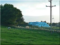 NZ5906 : Wrapped Hay Bales, Bank Foot by Paul Buckingham
