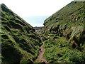 NX9413 : Path to the sea, North Head by David Brown