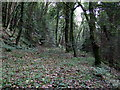 SM9624 : Brunel's trackbed in Treffgarne Gorge by ceridwen
