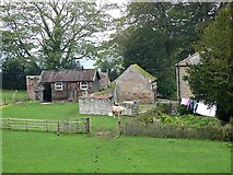 NY8563 : Outbuildings at Threepwood Hall by Oliver Dixon