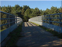 TQ1362 : Esher Common, footbridge over the A3 by Alan Hunt