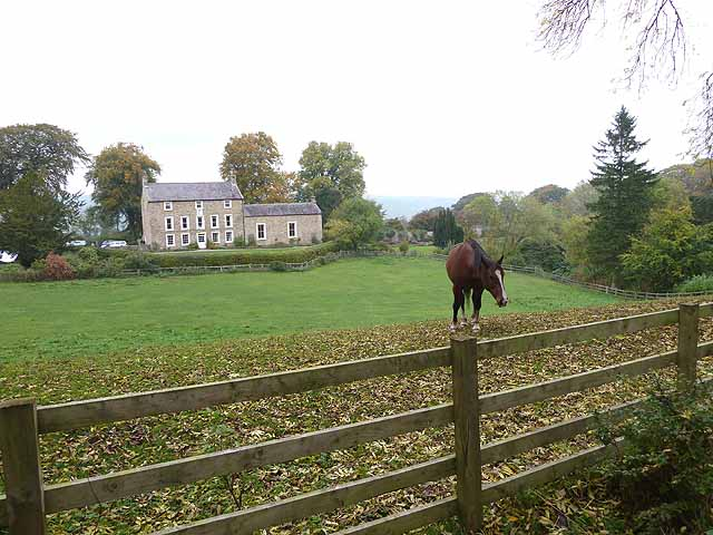 Horse and Threepwood Hall