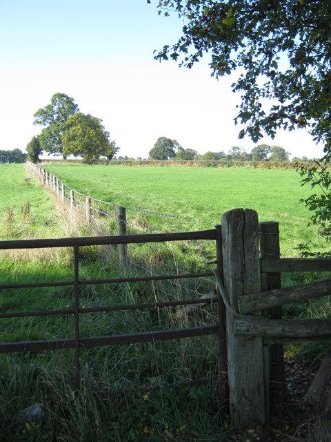 Field footpath, Tamworth Road