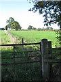 SP1398 : Field footpath, Tamworth Road by Michael Westley