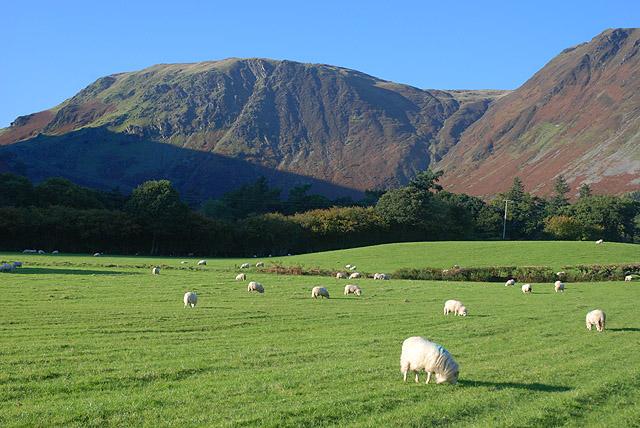 Fields near Pennant