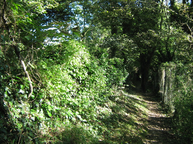 North Downs Way beside Crete Road West