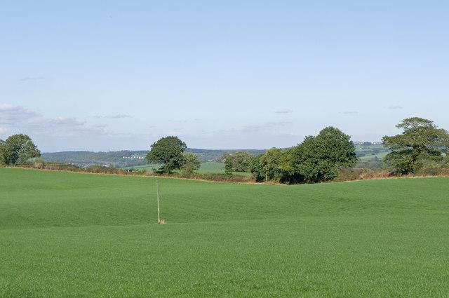 Near Radwood Farm
