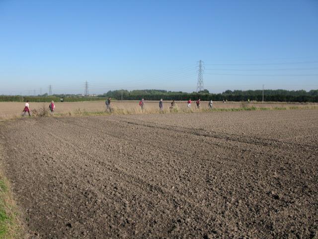 Track through farmland to the north of Felderland Lane