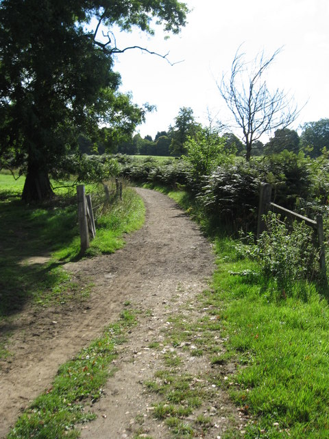 Greensand Way across the Alders