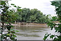 TQ2277 : Looking across the river towards Chiswick Eyot. by N Chadwick