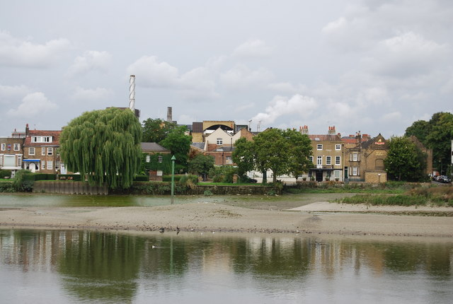 The southern end of Chiswick Eyot