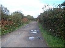 SH2428 : Track northwards towards Ty'n-y-parc by Eric Jones