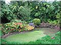 TQ3835 : Stagnant pond at Standen by Stephen Craven