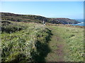 SW4840 : The South West Coast Path between Pen Enys Point and Carn Naun Point by Jeremy Bolwell