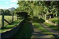 SO3521 : Track entrance and Ysgyryd Fawr by Philip Halling