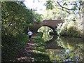 SP0274 : Worcester & Birmingham Canal - Bridge 66 by John M