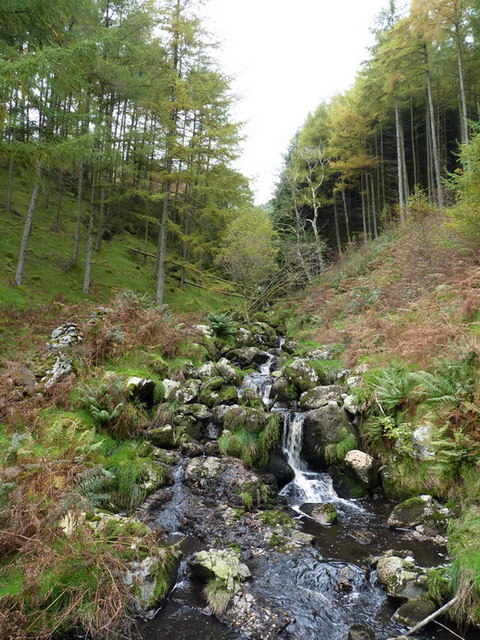Upstream on the Nant y Graig-wen