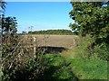 SP3556 : Bridleway to Checkleys Brake by David P Howard