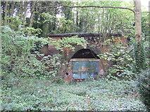 TQ3471 : Closed railway tunnel, Upper Sydenham by Malc McDonald