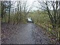 SJ9099 : Footbridge over the River Medlock by Alexander P Kapp