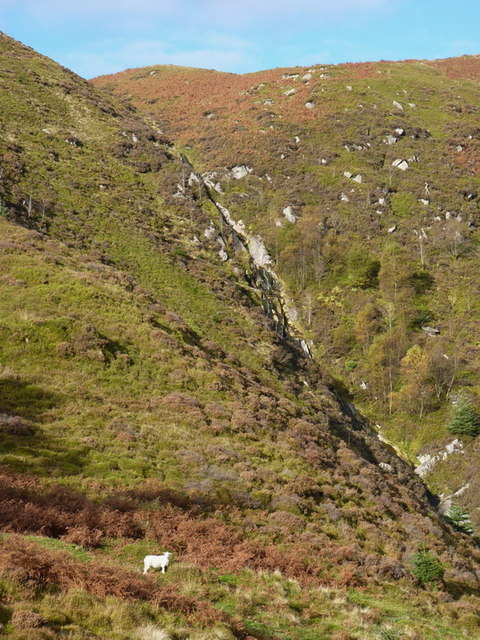 A tributary of the Nant Maesglase