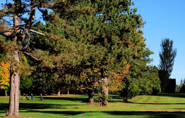 Ormeau Golf Club, Belfast (3)