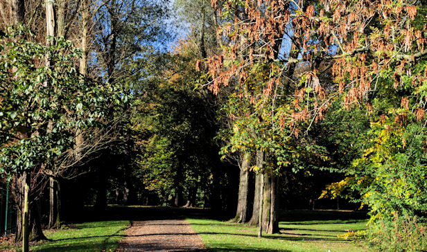 Path, Ormeau Park, Belfast
