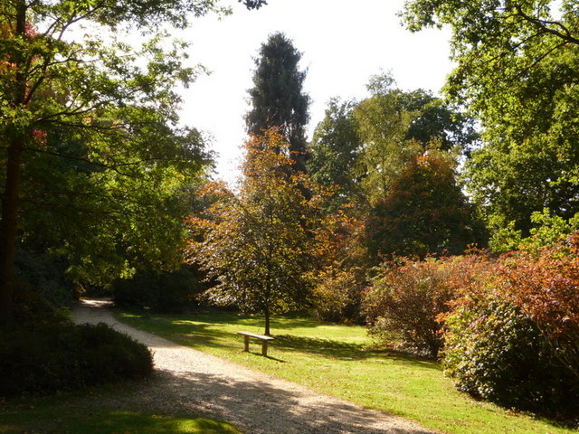 Exbury: a bench in Exbury Gardens by Chris Downer