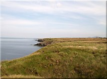 SH2035 : View north along the cliff tops in the direction of Porth Ychain by Eric Jones