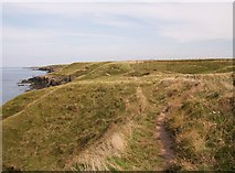 SH2035 : View north-eastwards along the cliff-tops from Penrhyn Melyn by Eric Jones