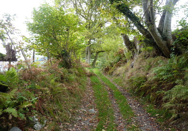 The old road from Aber Cywarch to Cwm Cerist