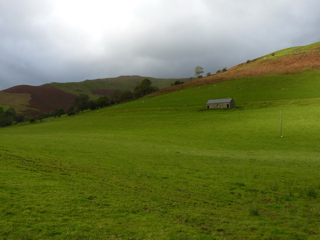 Field barn in Cwm Cerist