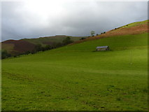 SH8216 : Field barn in Cwm Cerist by Richard Law