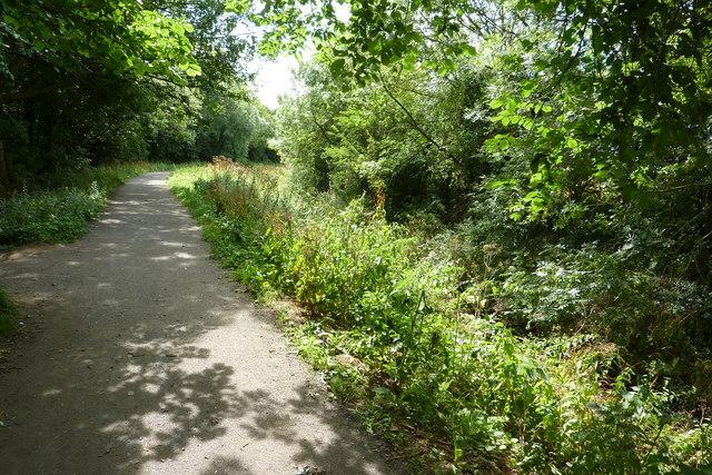 Footpath alongside Baydale Beck