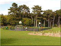SZ0894 : Redhill: hard football pitch in Redhill Park by Chris Downer