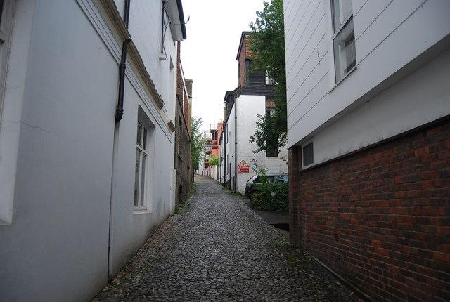 Frog Lane