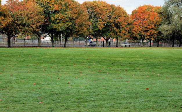 Ormeau Park, Belfast (18)
