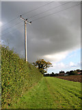 TM3995 : Footpath from Hales to Brundish by Evelyn Simak