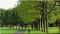 J3473 : Ormeau Park, Belfast (21) by Albert Bridge
