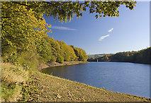 SE0118 : Ryburn Reservoir shoreline by Paul Harrop