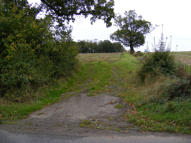 Field entrance next to Long Covert