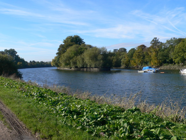 The Thames near Marble Hill