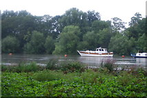 TQ1773 : Boat on the River Thames by N Chadwick