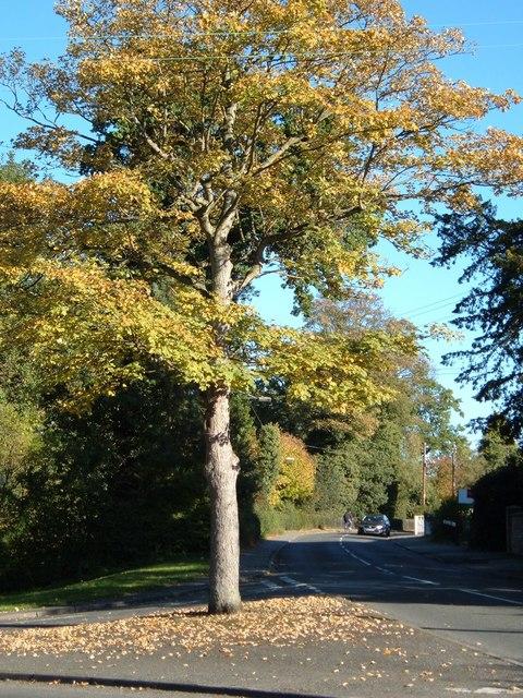 Broughton Lane junction